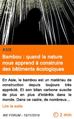 Economie bambou quand la nature nous apprend a construire des batiments ecologiques