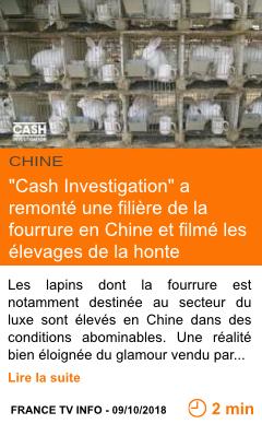 Economie cash investigation a remonte une filiere de la fourrure en chine et filme les elevages de la honte