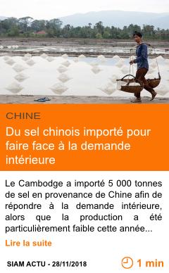 Economie du sel chinois importe pour faire face a la demande interieure page001