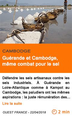 Economie guerande et cambodge meme combat pour le sel
