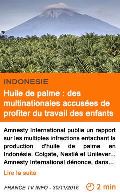 Economie indonesie huile de palme des multinationales accusees de profiter du travail des enfants