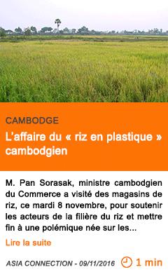 Economie l affaire du riz en plastique cambodgien