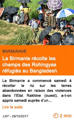 Economie la birmanie recolte les champs des rohingyas refugies au bangladesh