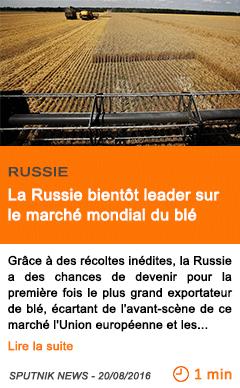 Economie la russie bientot leader sur le marche mondial du ble 1