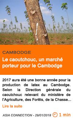 Economie le caoutchouc un marche porteur pour le cambodge