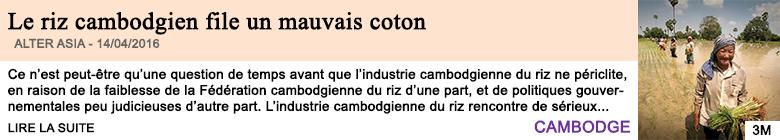 Economie le riz cambodgien file un mauvais coton