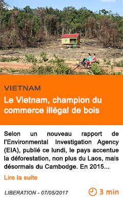 Economie le vietnam champion du commerce illegal de bois