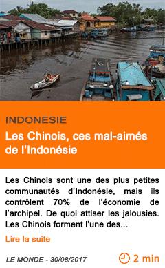 Economie les chinois ces mal aimes de l indonesie