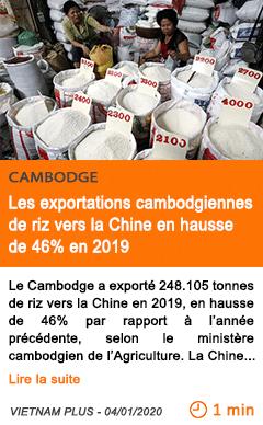 Economie les exportations cambodgiennes de riz vers la chine en hausse de 46 en 2019
