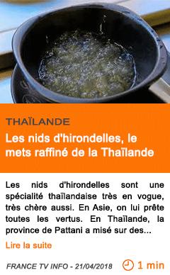 Economie les nids d hirondelles le mets raffine de la thailande