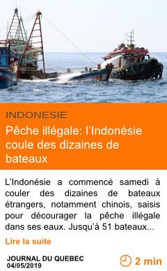 Economie peche illegale l indonesie coule des dizaines de bateaux page001