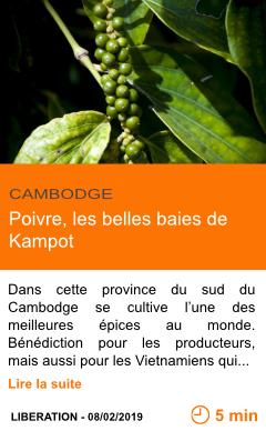 Economie poivre les belles baies de kampot page001