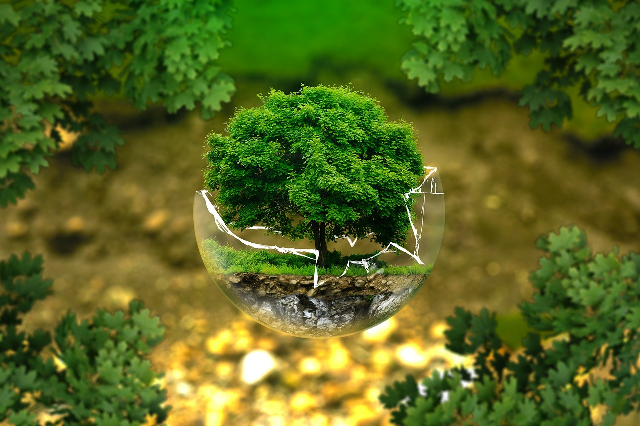Environnement cambodge