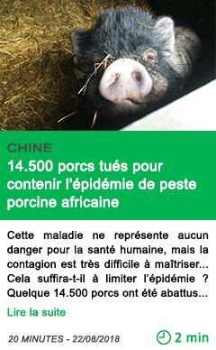 Science 14500 porcs tues pour contenir l epidemie de peste porcine africaine