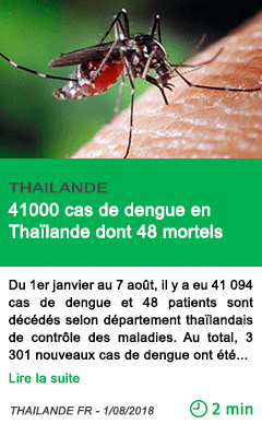Science 41000 cas de dengue en thailande dont 48 mortels