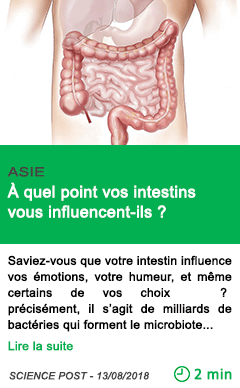 Science a quel point vos intestins vous influencent ils