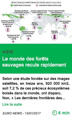 Science asie le monde des forets sauvages recule rapidement