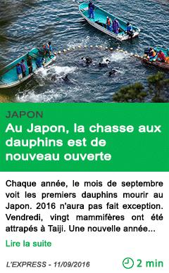 Science au japon la chasse aux dauphins est de nouveau ouverte