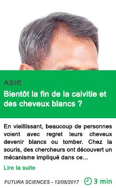 Science bientot la fin de la calvitie et des cheveux blancs