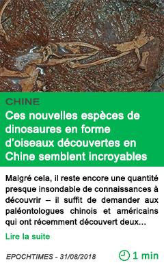 Science ces nouvelles especes de dinosaures en forme d oiseaux decouvertes en chine semblent incroyables