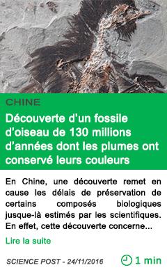 Science chine decouverte d un fossile d oiseau de 130 millions d annees dont les plumes ont conserve leurs couleurs