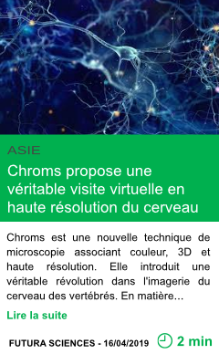 Science chroms propose une veritable visite virtuelle en haute resolution du cerveau page001