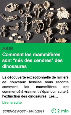 Science comment les mammiferes sont nes des cendres des dinosaures
