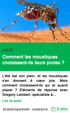 Science comment les moustiques choisissent ils leurs proies