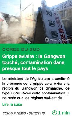 Science coree du sud grippe aviaire le gangwon touche contamination dans presque tout le pays