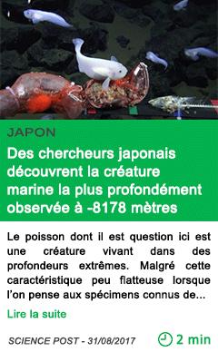 Science des chercheurs japonais decouvrent la creature marine la plus profondement observee a 8178 metres