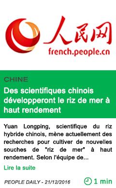 Science des scientifiques chinois developperont le riz de mer a haut rendement