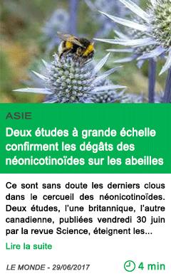 Science deux etudes a grande echelle confirment les degats des neonicotinoides sur les abeilles