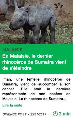 Science en malaisie le dernier rhinoceros de sumatra vient de s eteindre