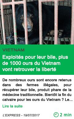 Science exploites pour leur bile plus de 1000 ours du vietnam vont retrouver la liberte