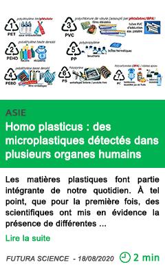 Science homo plasticus des microplastiques detectes dans plusieurs organes humains