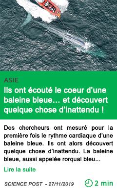 Science ils ont ecoute le coeur d une baleine bleue et decouvert quelque chose d inattendu