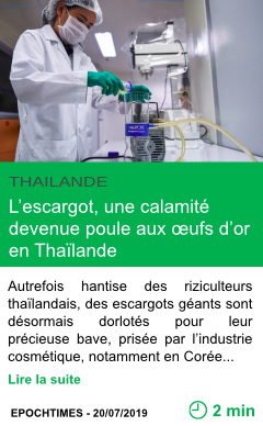 Science l escargot une calamite devenue poule aux ufs d or en thailande page001