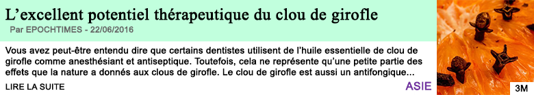 Science l excellent potentiel therapeutique du clou de girofle