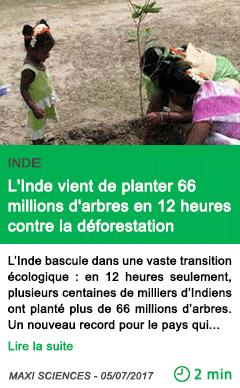 Science l inde vient de planter 66 millions d arbres en 12 heures contre la deforestation