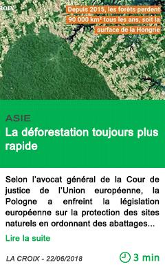 Science la deforestation toujours plus rapide