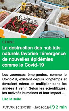 Science la destruction des habitats naturels favorise l emergence de nouvelles epidemies comme le covid 19