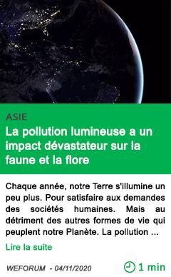 Science la pollution lumineuse a un impact de vastateur sur la faune et la flore