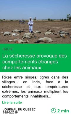 Science la secheresse provoque des comportements etranges chez les animaux page001