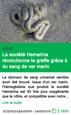 Science la societe hemarina revolutionne la greffe grace a du sang de ver marin