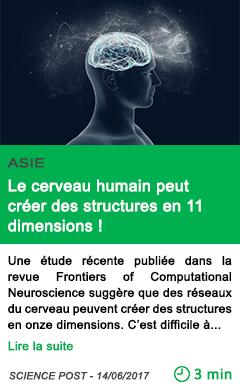 Science le cerveau humain peut creer des structures en 11 dimensions