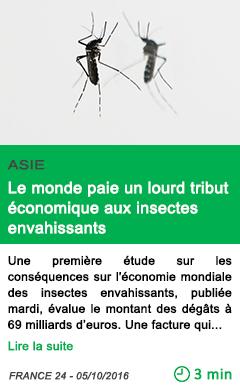 Science le monde paie un lourd tribut economique aux insectes envahissants
