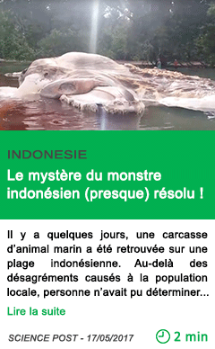 Science le mystere du monstre indonesien presque resolu