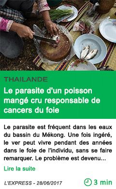 Science le parasite d un poisson mange cru responsable de cancers du foie