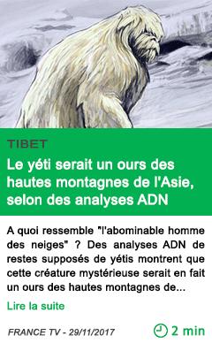 Science le yeti serait un ours des hautes montagnes de l asie selon des analyses adn