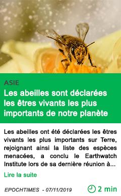 Science les abeilles sont declarees les etres vivants les plus importants de notre planete